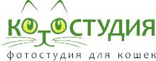 Котостудия