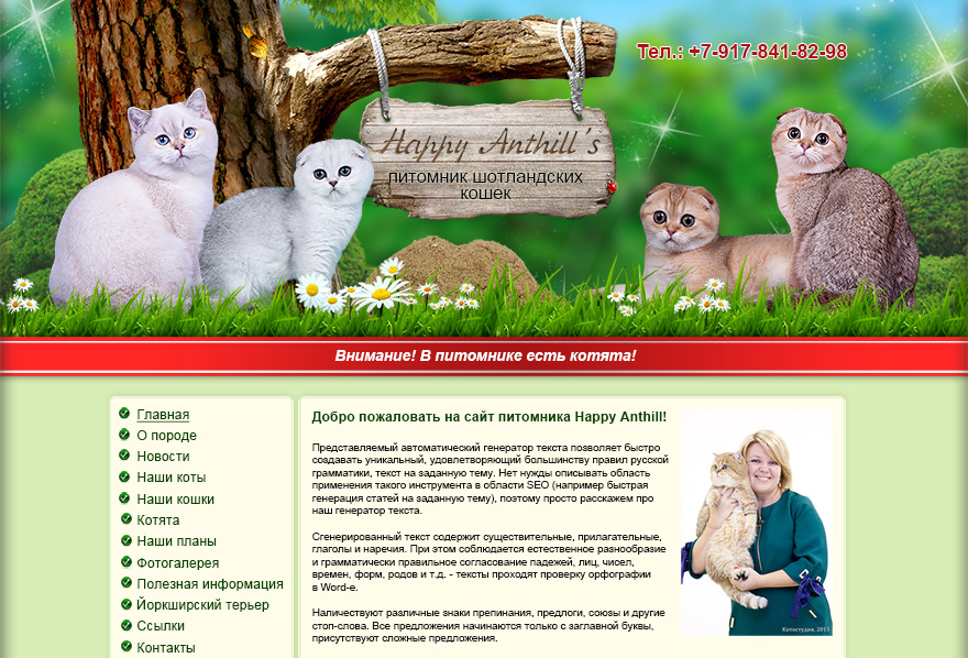 Сайт питомника Шотландских кошек Happy Anthills